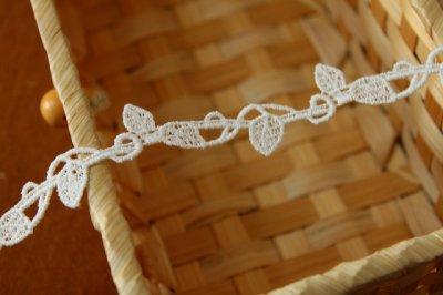 画像1: 3m!幅1.7cm美しい葉柄綿ケミカルレース オフホワイト ボタニカルレース