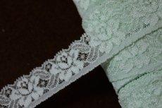 画像1: 幅2.8cm綺麗な薔薇柄ラッセルストレッチレース 緑色 (1)