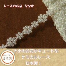 画像1: 6m!幅1.1cm大小のお花柄ケミカルレース オフホワイト (1)