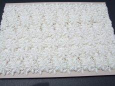 画像8: 1m!幅2.5cm綺麗な花柄綿ケミカルレース オフホワイト (8)