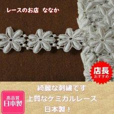 画像1: 1m!幅2.5cm綺麗な花柄綿ケミカルレース オフホワイト (1)