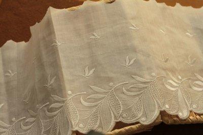 画像3: 1m!幅19cm美しい葉っぱ柄綿混ボーダーレース オフホワイト