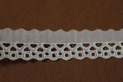 画像1: 6m!幅3.1cm綺麗な刺繍の綿レース オフホワイト
