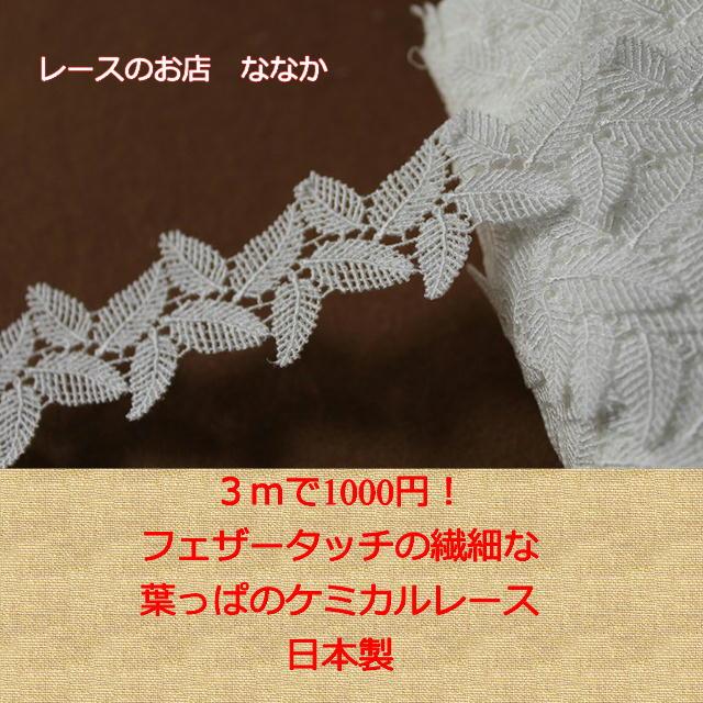 画像1: 3m!幅3.2cm繊細な葉っぱ、もしくは羽柄ケミカルレース オフホワイト アクセサリーレース (1)